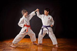 ศิลปะการต่อสู้ญี่ปุ่น คาราเต้